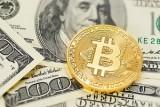Слабый доллар и биткоин поддержали цены на золото